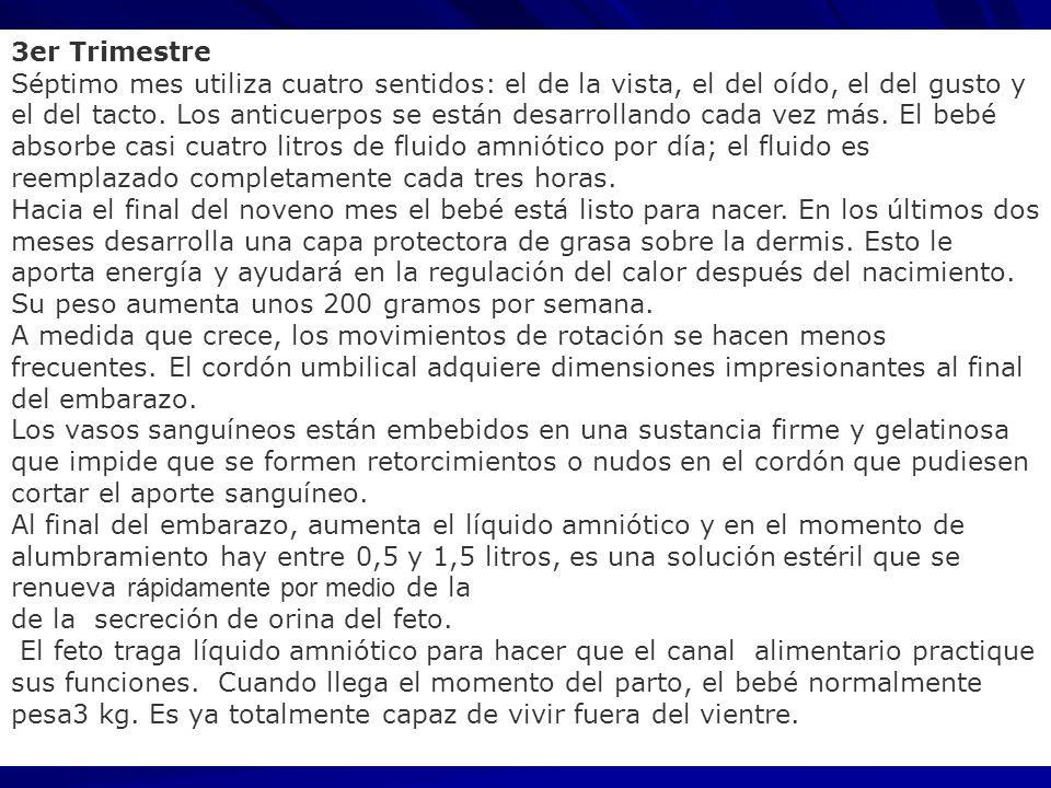 3er Trimestre Séptimo mes utiliza cuatro sentidos: el de la vista, el del oído, el del gusto y el del tacto. Los anticuerpos se están desarrollando ca