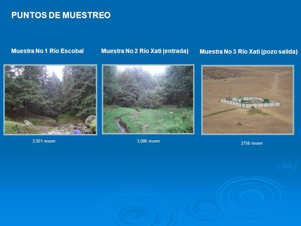 Muestra No 1 Río EscobalMuestra No 2 Río Xati (entrada) Muestra No 3 Río Xati (pozo salida) PUNTOS DE MUESTREO 2,921 msnm3,086 msnm 2758 msnm