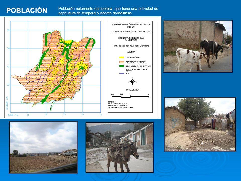 Población netamente campesina que tiene una actividad de agricultura de temporal y labores domésticas POBLACIÓN