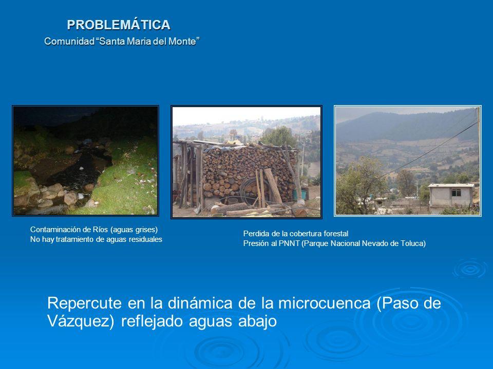 PROBLEMÁTICA Comunidad Santa Maria del Monte PROBLEMÁTICA Comunidad Santa Maria del Monte Repercute en la dinámica de la microcuenca (Paso de Vázquez)