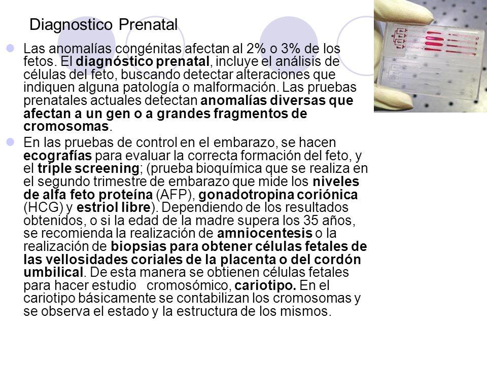 Diagnostico Prenatal Las anomalías congénitas afectan al 2% o 3% de los fetos. El diagnóstico prenatal, incluye el análisis de células del feto, busca