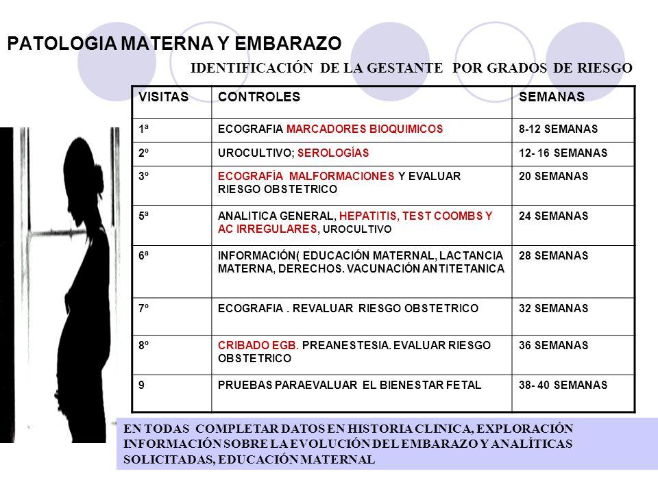 PATOLOGIA MATERNA Y EMBARAZO IDENTIFICACIÓN DE LA GESTANTE POR GRADOS DE RIESGO VISITASCONTROLESSEMANAS 1ªECOGRAFIA MARCADORES BIOQUIMICOS8-12 SEMANAS