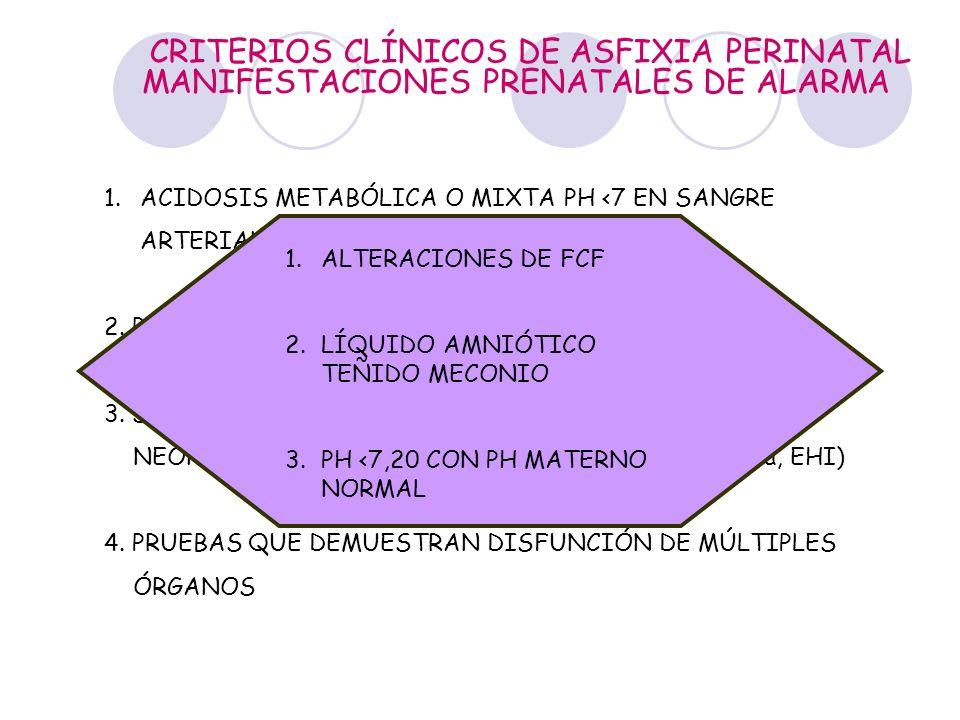 CRITERIOS CLÍNICOS DE ASFIXIA PERINATAL 1.ACIDOSIS METABÓLICA O MIXTA PH <7 EN SANGRE ARTERIAL DE CORDÓN UMBILICAL 2. PERSISTENCIA DE APGAR 0-3 POR MÁ