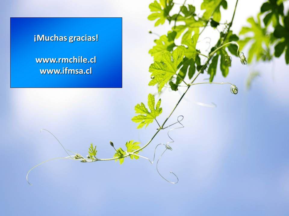 ¡Muchas gracias! www.rmchile.clwww.ifmsa.cl
