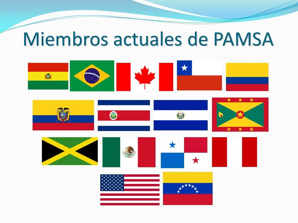 Miembros actuales de PAMSA