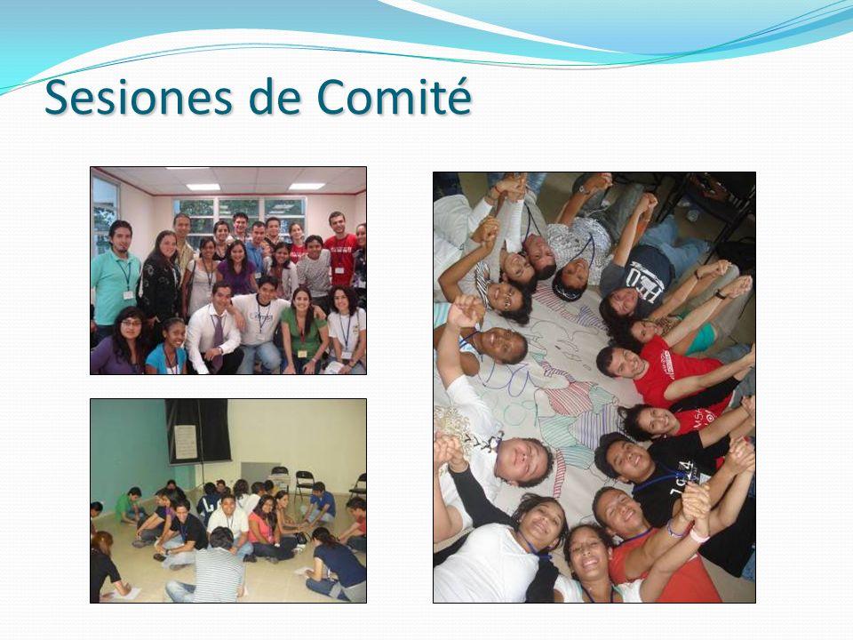 Sesiones de Comité