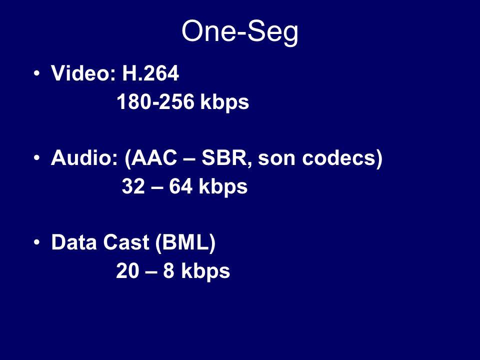 One-Seg Video: H.264 180-256 kbps Audio: (AAC – SBR, son codecs) 32 – 64 kbps Data Cast (BML) 20 – 8 kbps