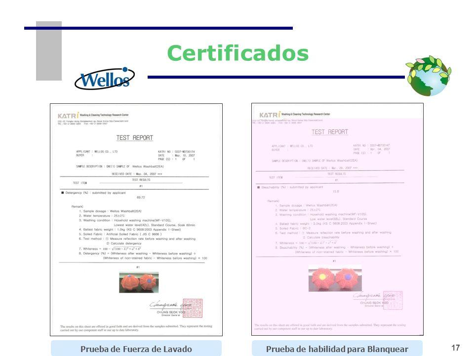 17 Certificados Prueba de Fuerza de LavadoPrueba de habilidad para Blanquear