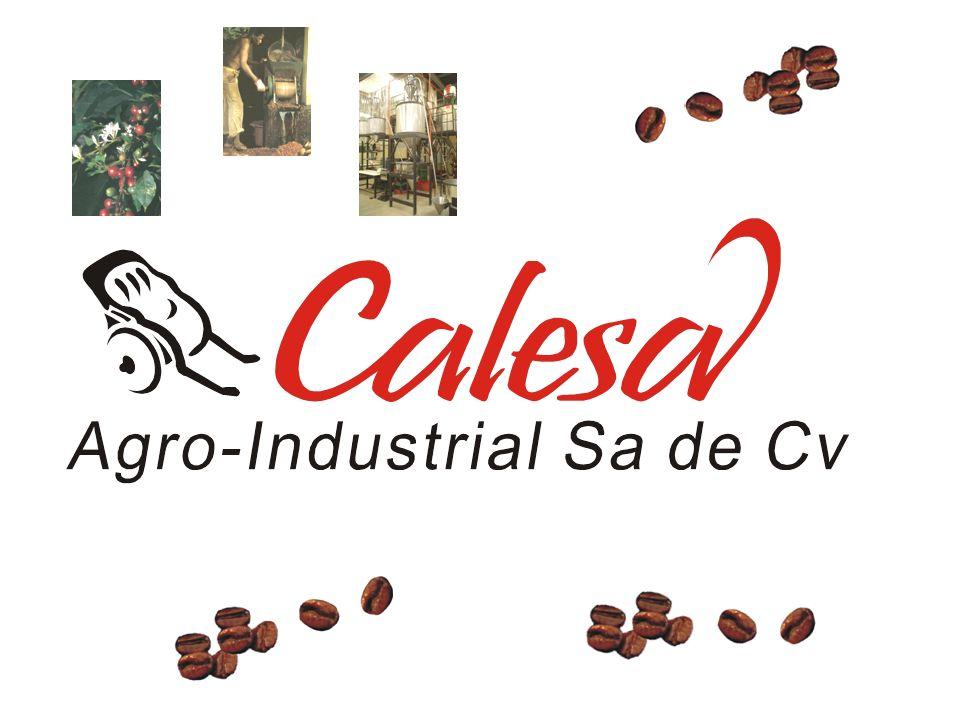 La Empresa CALESA® Agro-Industrial Sa de Cv es creada en el año 2000, montando una planta tostadora de café con la tecnología mas avanzada en el procesamiento del grano, estableciéndose en la ciudad de León, Guanajuato, en el centro geográfico de México.