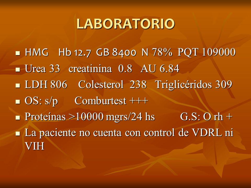 LABORATORIO HMG Hb 12.7 GB 8400 N 78% PQT 109000 HMG Hb 12.7 GB 8400 N 78% PQT 109000 Urea 33 creatinina 0.8 AU 6.84 Urea 33 creatinina 0.8 AU 6.84 LD