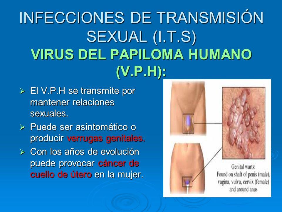 INFECCIONES DE TRANSMISIÓN SEXUAL (I.T.S) VIRUS DEL PAPILOMA HUMANO (V.P.H): El V.P.H se transmite por mantener relaciones sexuales. El V.P.H se trans