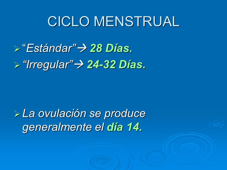 CICLO MENSTRUAL Estándar 28 Días.Estándar 28 Días. Irregular 24-32 Días. Irregular 24-32 Días. La ovulación se produce generalmente el día 14. La ovul