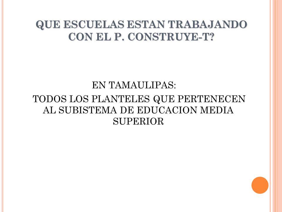 QUE ESCUELAS ESTAN TRABAJANDO CON EL P.CONSTRUYE-T.