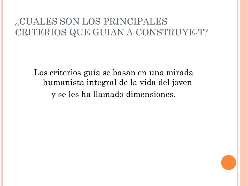 ¿CUALES SON LOS PRINCIPALES CRITERIOS QUE GUIAN A CONSTRUYE-T.
