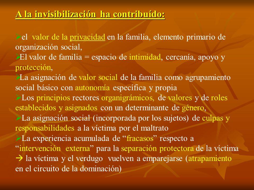 A la invisibilización ha contribuído: el valor de la privacidad en la familia, elemento primario de organización social, El valor de familia = espacio