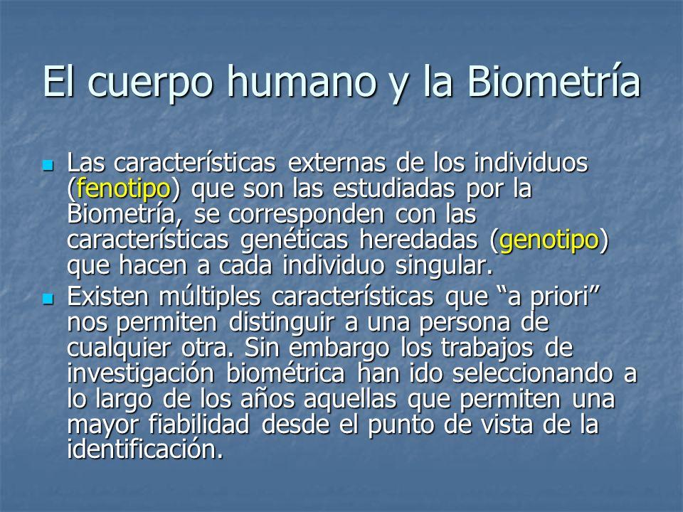 El cuerpo humano y la Biometría Las características externas de los individuos (fenotipo) que son las estudiadas por la Biometría, se corresponden con