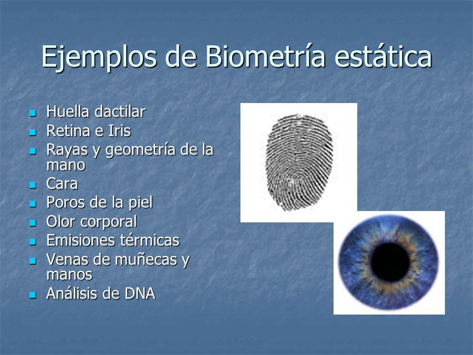 Ejemplos de Biometría estática Huella dactilar Huella dactilar Retina e Iris Retina e Iris Rayas y geometría de la mano Rayas y geometría de la mano C