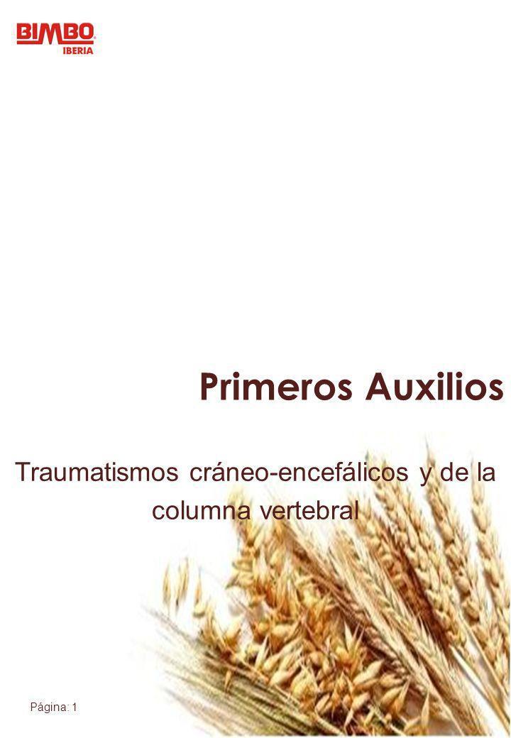 Página: 1 Traumatismos cráneo-encefálicos y de la columna vertebral Primeros Auxilios