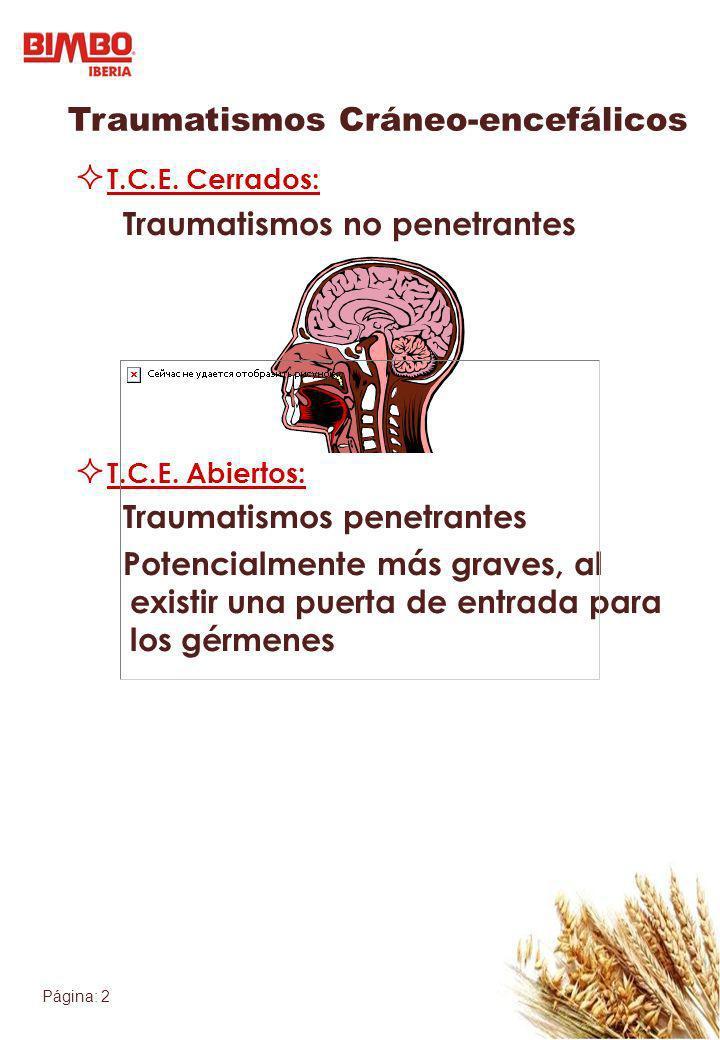 Página: 2 Traumatismos Cráneo-encefálicos T.C.E. Cerrados: Traumatismos no penetrantes T.C.E. Abiertos: Traumatismos penetrantes Potencialmente más gr