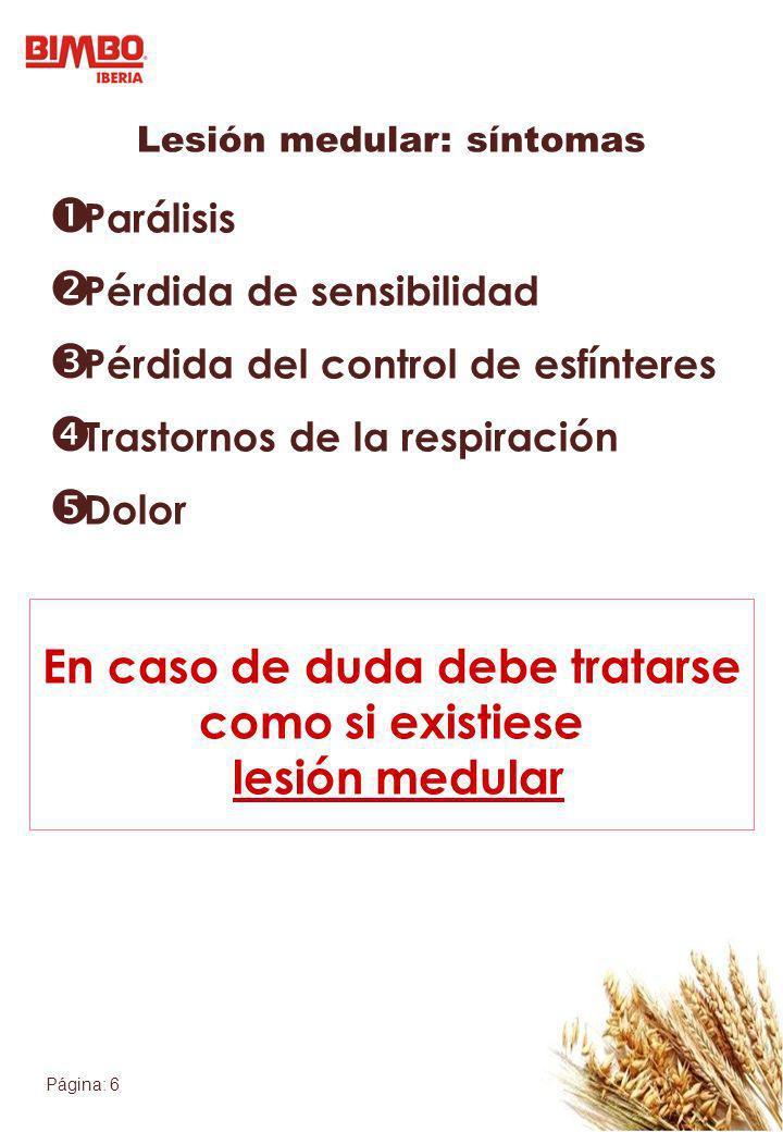Página: 6 Lesión medular: síntomas Parálisis Pérdida de sensibilidad Pérdida del control de esfínteres Trastornos de la respiración Dolor En caso de d
