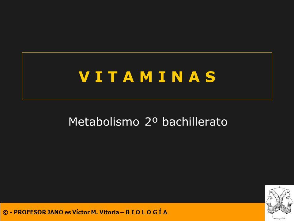 © - PROFESOR JANO es Víctor M. Vitoria – B I O L O G Í A V I T A M I N A S Metabolismo 2º bachillerato