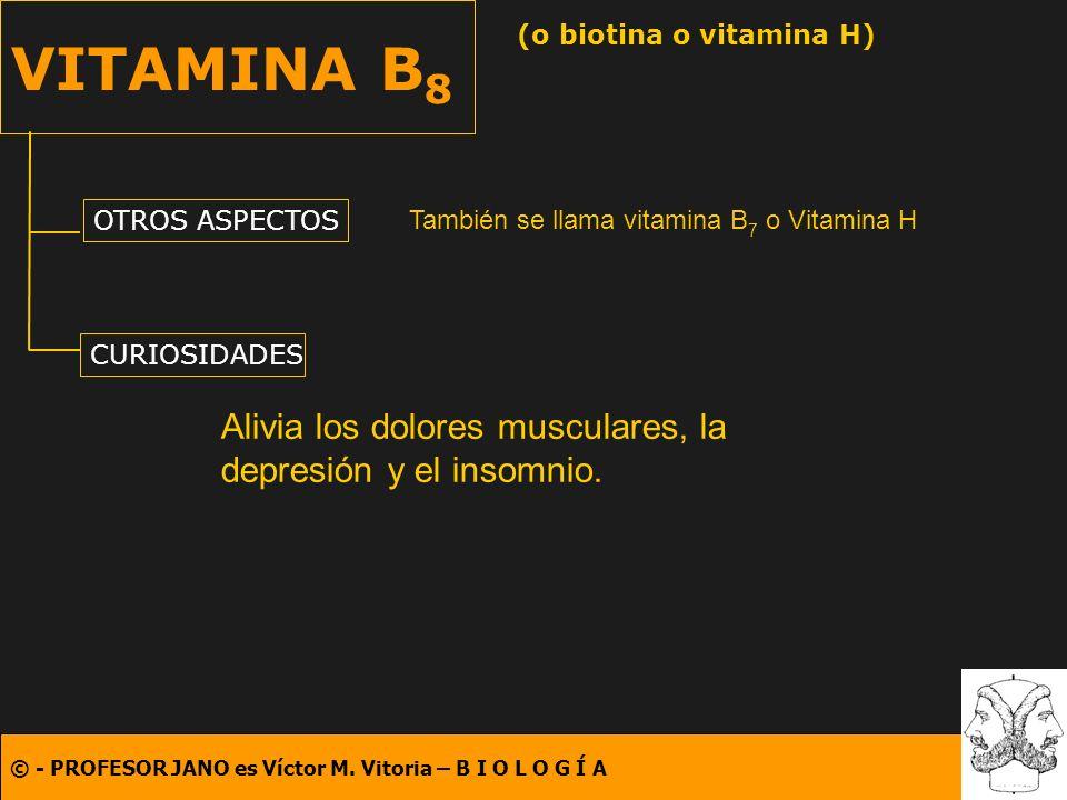 © - PROFESOR JANO es Víctor M. Vitoria – B I O L O G Í A VITAMINA B 8 (o biotina o vitamina H) OTROS ASPECTOS CURIOSIDADES También se llama vitamina B