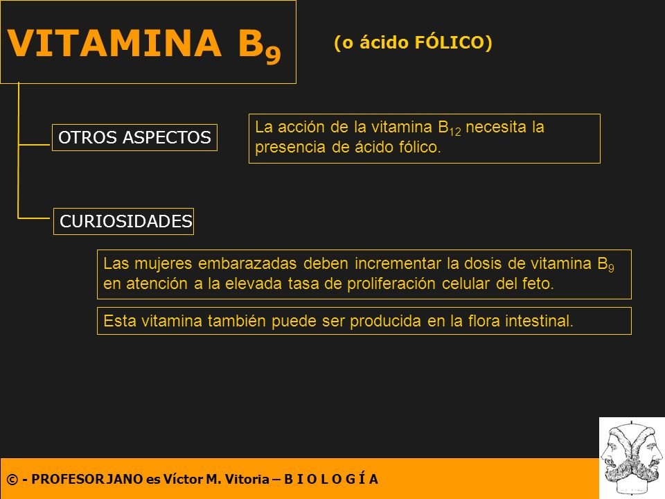 © - PROFESOR JANO es Víctor M. Vitoria – B I O L O G Í A VITAMINA B 9 (o ácido FÓLICO) OTROS ASPECTOS CURIOSIDADES La acción de la vitamina B 12 neces