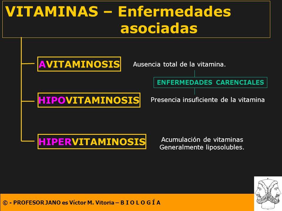 © - PROFESOR JANO es Víctor M. Vitoria – B I O L O G Í A VITAMINAS – Enfermedades asociadas AVITAMINOSIS HIPOVITAMINOSIS HIPERVITAMINOSIS Ausencia tot