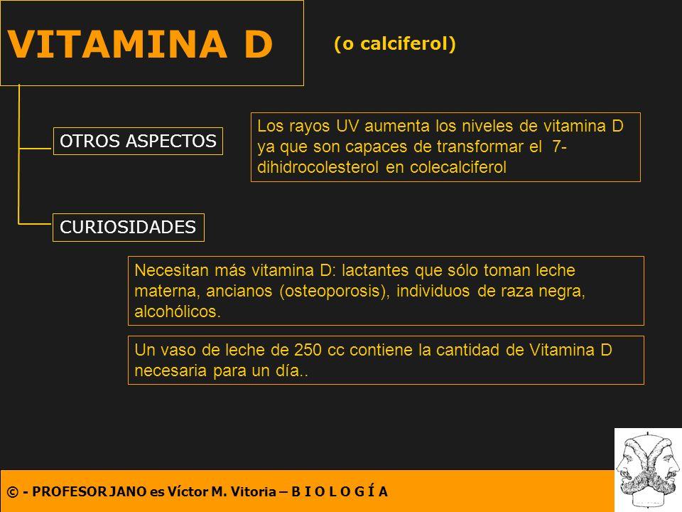 © - PROFESOR JANO es Víctor M. Vitoria – B I O L O G Í A VITAMINA D (o calciferol) OTROS ASPECTOS CURIOSIDADES Los rayos UV aumenta los niveles de vit