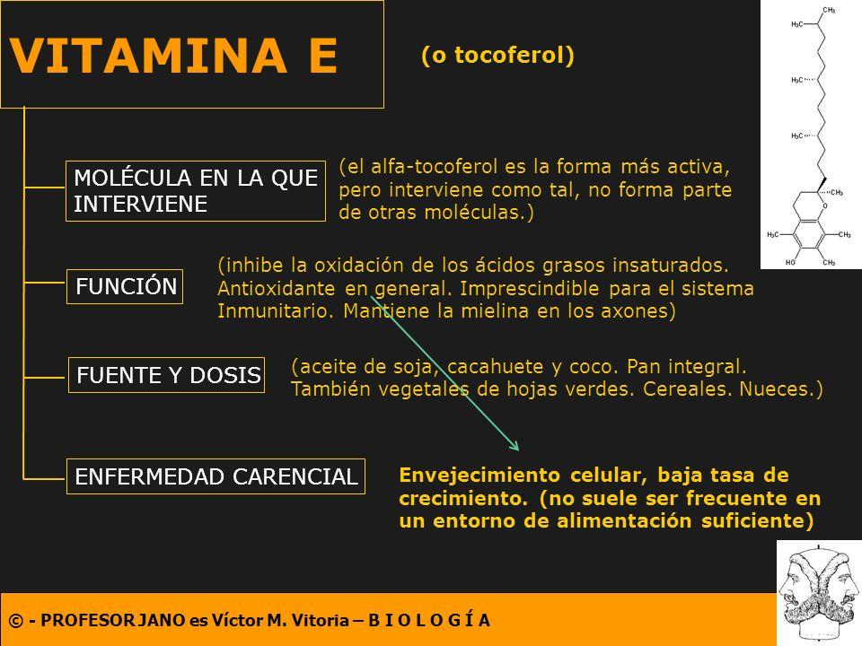 © - PROFESOR JANO es Víctor M. Vitoria – B I O L O G Í A VITAMINA E (o tocoferol) MOLÉCULA EN LA QUE INTERVIENE FUNCIÓN FUENTE Y DOSIS ENFERMEDAD CARE
