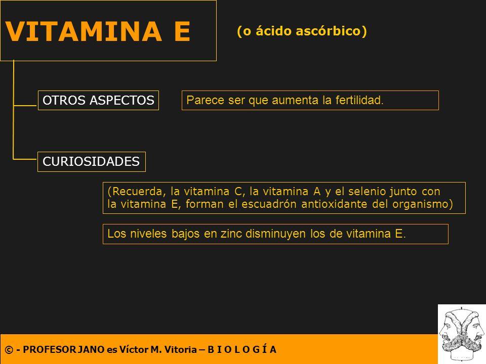 © - PROFESOR JANO es Víctor M. Vitoria – B I O L O G Í A VITAMINA E (o ácido ascórbico) OTROS ASPECTOS CURIOSIDADES Parece ser que aumenta la fertilid
