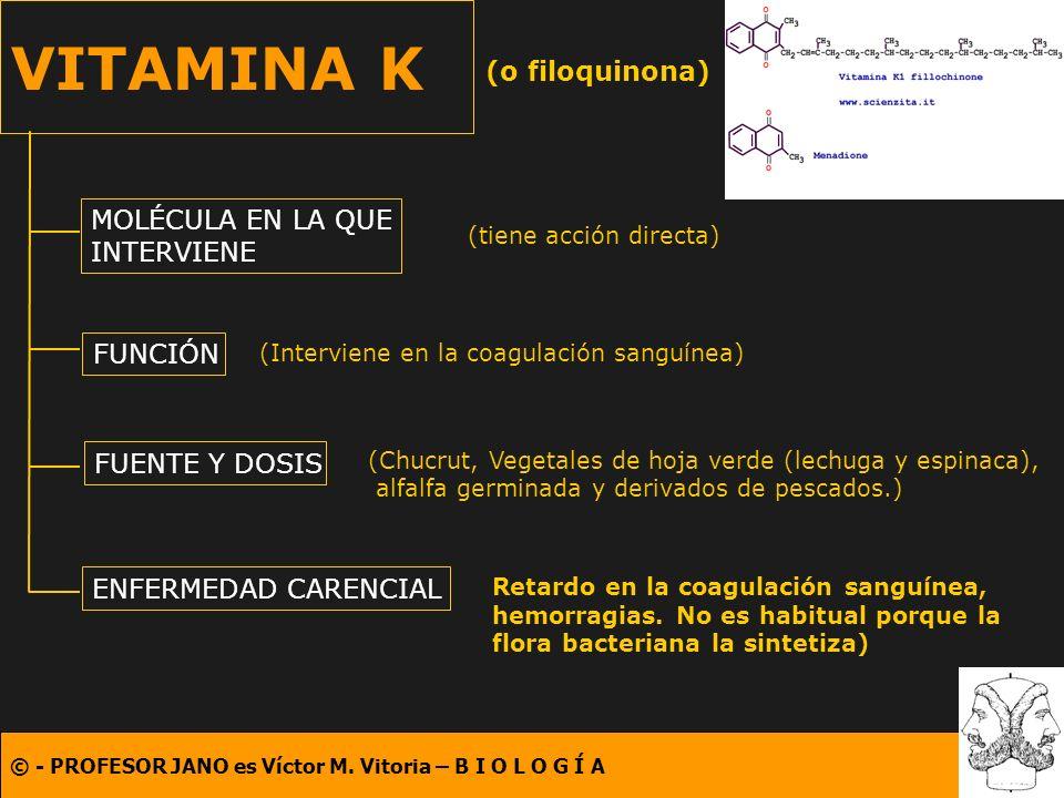 © - PROFESOR JANO es Víctor M. Vitoria – B I O L O G Í A VITAMINA K (o filoquinona) MOLÉCULA EN LA QUE INTERVIENE FUNCIÓN FUENTE Y DOSIS ENFERMEDAD CA