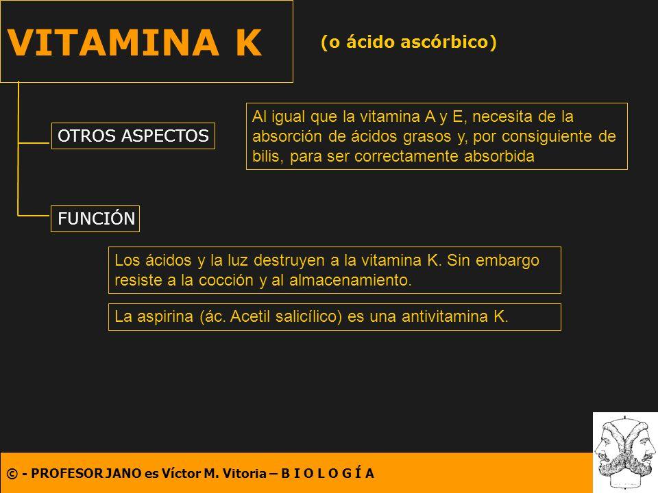 © - PROFESOR JANO es Víctor M. Vitoria – B I O L O G Í A VITAMINA K (o ácido ascórbico) OTROS ASPECTOS FUNCIÓN Al igual que la vitamina A y E, necesit