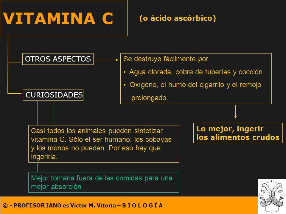 © - PROFESOR JANO es Víctor M. Vitoria – B I O L O G Í A VITAMINA C (o ácido ascórbico) OTROS ASPECTOS CURIOSIDADES Se destruye fácilmente por Agua cl