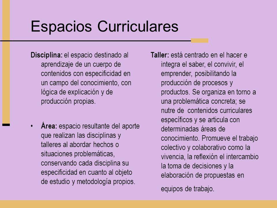 Espacios Curriculares Disciplina: el espacio destinado al aprendizaje de un cuerpo de contenidos con especificidad en un campo del conocimiento, con l