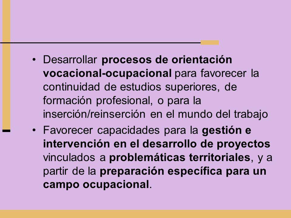 Desarrollar procesos de orientación vocacional-ocupacional para favorecer la continuidad de estudios superiores, de formación profesional, o para la i