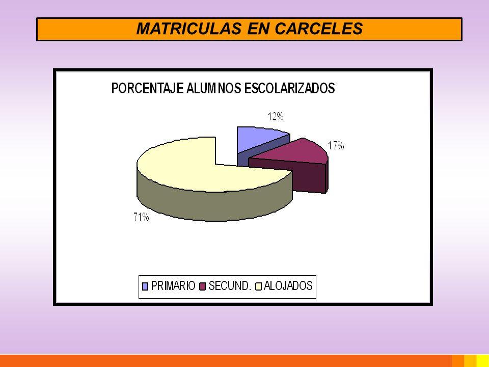 MATRICULA JOVENES EN CONFLICTO CON LA LEY INSTITUCIONLOCALIDADMATRICULA 2011ALOJADOS PRIMARIOSECUND.TOTAL COMPLEJO ESPERANZA (Privados de Libertad) BOWER47121168200 INSTITUTO SOCIO- EDUCATIVO LELIKELEN CORDOBA (Capital) 77355432-.- TOTALES124476600200