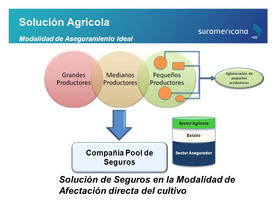 Solución Agricola Modalidad de Aseguramiento Ideal Compañía Pool de Seguros Solución de Seguros en la Modalidad de Afectación directa del cultivo Sect