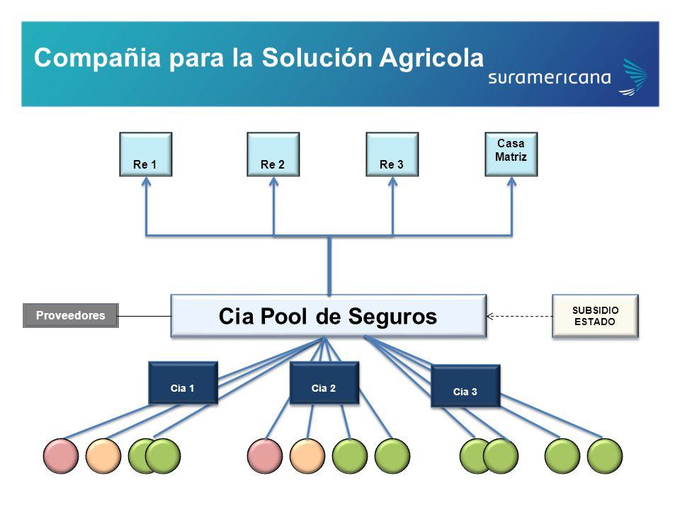 Compañia para la Solución Agricola Cia Pool de Seguros Re 1Re 2Re 3 Casa Matriz SUBSIDIO ESTADO SUBSIDIO ESTADO Cia 1 Cia 2 Proveedores Cia 3