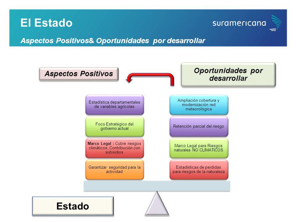 Estado El Estado Aspectos Positivos& Oportunidades por desarrollar