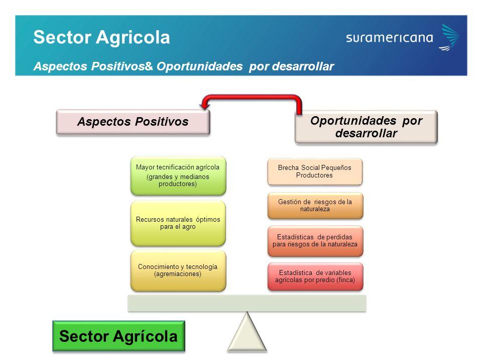 Sector Agrícola Sector Agricola Aspectos Positivos& Oportunidades por desarrollar Brecha Social Pequeños Productores