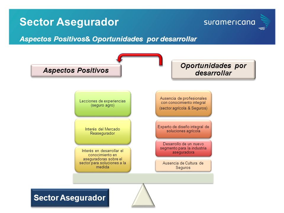 Sector Asegurador Aspectos Positivos& Oportunidades por desarrollar Ausencia de Cultura de Seguros