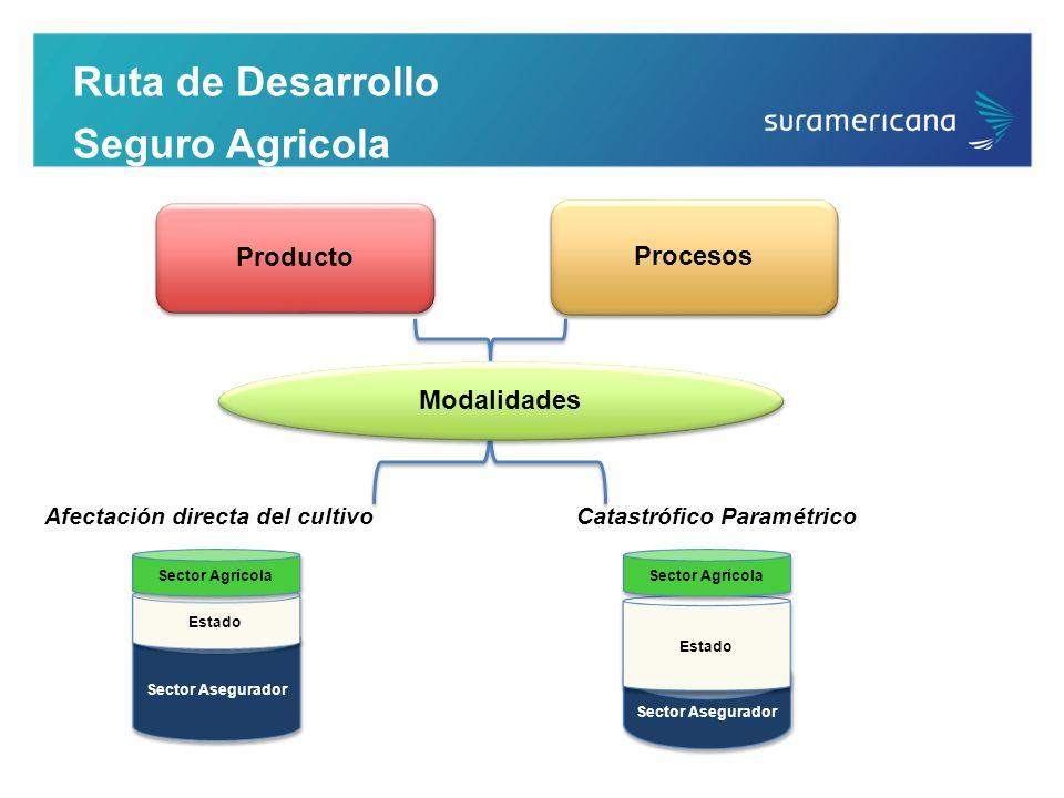 Ruta de Desarrollo Seguro Agricola Afectación directa del cultivo Procesos Producto Modalidades Catastrófico Paramétrico Sector Asegurador Estado Sect