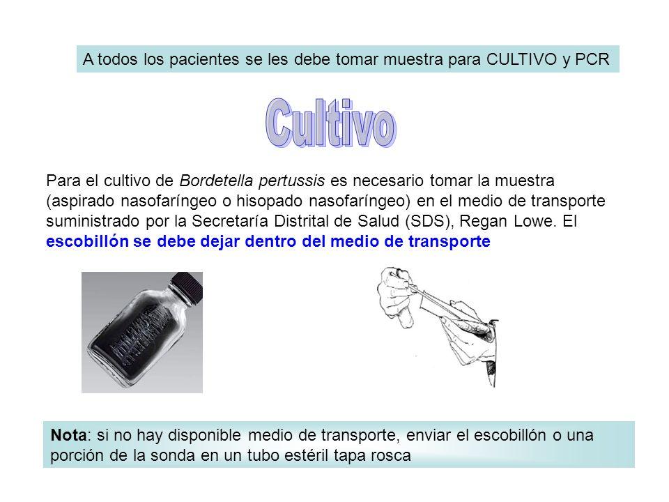 A todos los pacientes se les debe tomar muestra para CULTIVO y PCR Otro escobillón se deposita en un tubo seco estéril, preferiblemente tapa rosca.