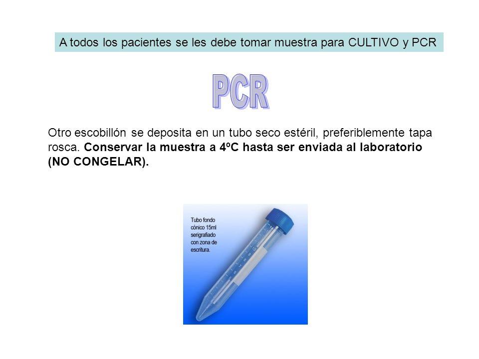 A todos los pacientes se les debe tomar muestra para CULTIVO y PCR Otro escobillón se deposita en un tubo seco estéril, preferiblemente tapa rosca. Co