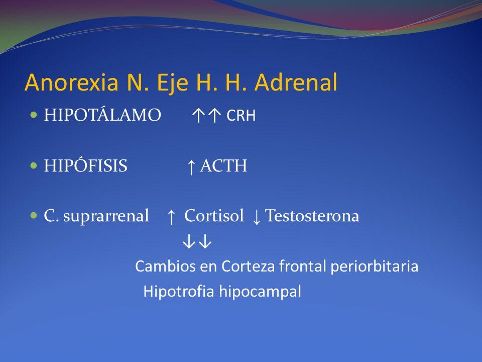 Anorexia N. Eje H. H. Adrenal HIPOTÁLAMO CRH HIPÓFISIS ACTH C. suprarrenal Cortisol Testosterona Cambios en Corteza frontal periorbitaria Hipotrofia h