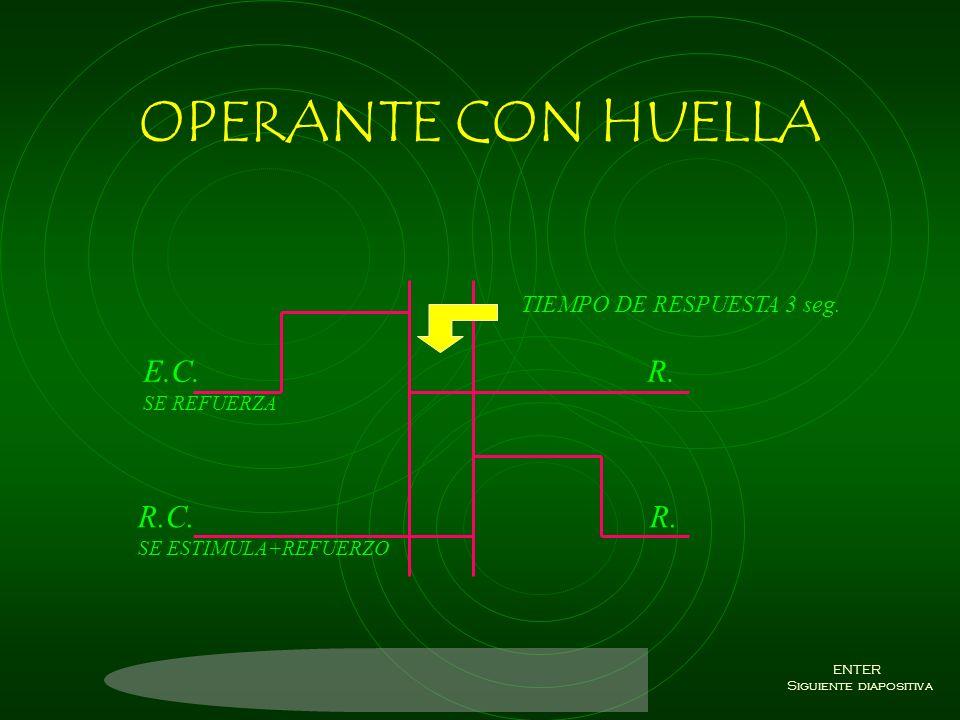 OPERANTE SIMULTANEO R.I./C. R. SE SIENTA E.C./N. R. REFUERZO+ESTIMULO ENTER Siguiente diapositiva