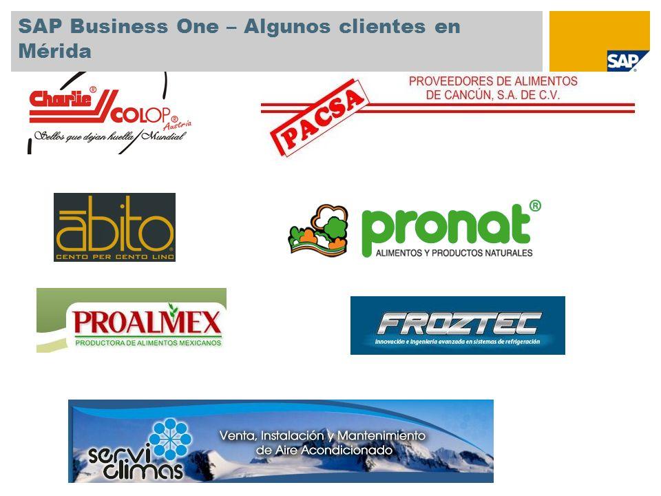 SAP Business One – Algunos clientes en Mérida