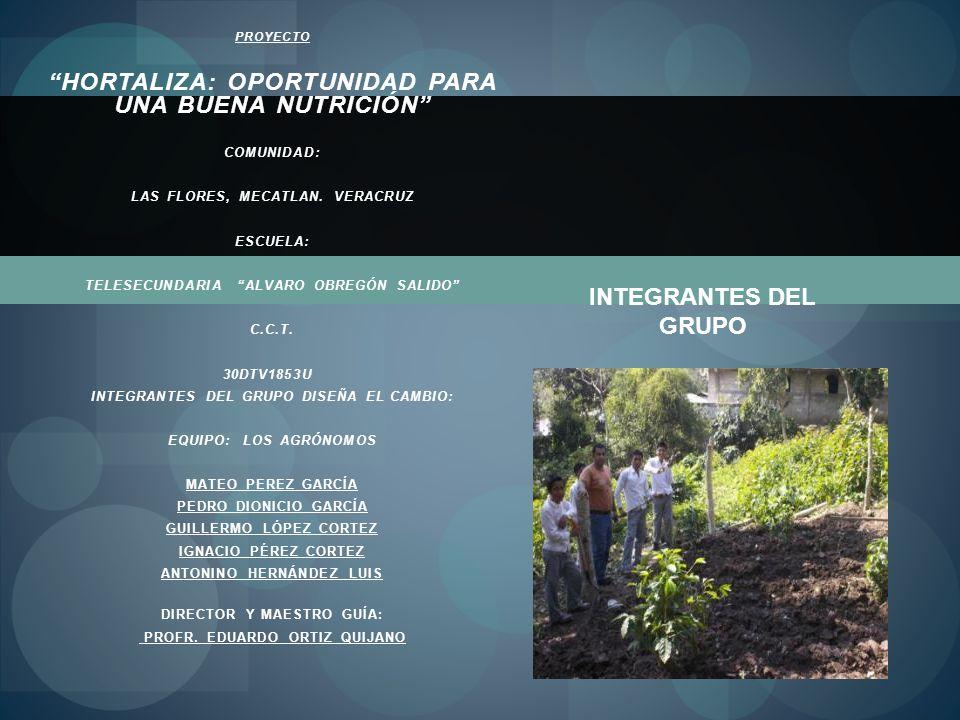 PROYECTO HORTALIZA: OPORTUNIDAD PARA UNA BUENA NUTRICIÓN COMUNIDAD: LAS FLORES, MECATLAN. VERACRUZ ESCUELA: TELESECUNDARIA ALVARO OBREGÓN SALIDO C.C.T