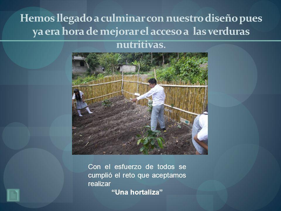 Hemos llegado a culminar con nuestro diseño pues ya era hora de mejorar el acceso a las verduras nutritivas. Con el esfuerzo de todos se cumplió el re